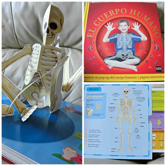 libro del cuerpo humano